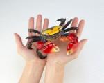 Kaiyodo RevoGeo Vol 02 – Red-clawed Crab