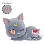 PGSM Fluffy Puffy – Luna B